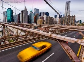 NY, ses lignes, ses couleurs