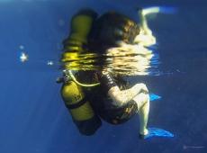Sous l'eau de la Martinique-11