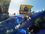 Sous l'eau de la Martinique-15