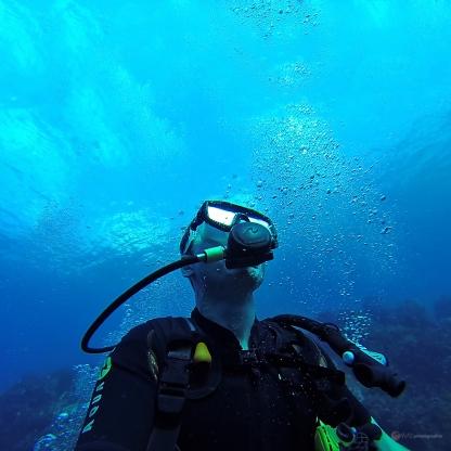 Sous l'eau de la Martinique-3