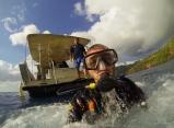 Sous l'eau de la Martinique-5
