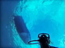 Sous l'eau de la Martinique-6