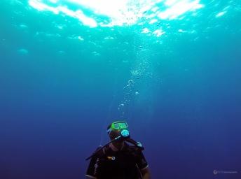 Sous l'eau de la Martinique-8
