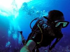 Sous l'eau de la Martinique-9